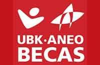 Becas UBK-ANEO de odontologia España 2016