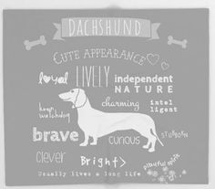 Dachshund Dog Blanket Typography Personalized Gift for Baby