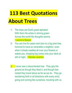 the cash flow quadrant robert t kiyosaki design my luis  tree plantation for better environment essay example essay on tree plantation essay on pollution of environment is home of thousands of articles published