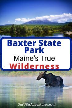A True wilderness experience in this remo. - Baxter State Park, Maine's Hidden Gem! A True wilderness experience in this remote state park wit - Maine Road Trip, Baxter State Park, Visit Maine, East Coast Travel, New England States, Us Destinations, Acadia National Park, National Parks, Vacation Spots