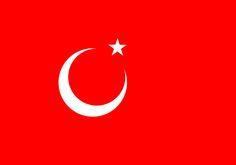 Kansu Turkish Nation Flag(in cansu-chaina)