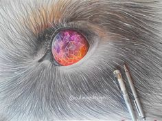 Finely done! XD to much hair and a tooooo big size! I draw it on a paper :S with color pencils and a bit copic marker. I really hope you like that draw! Animal Drawings, Pencil Drawings, Art Drawings, Sketch Painting, Drawing Art, Wolf Eyes, Doodle Sketch, Copic Markers, Visual Arts