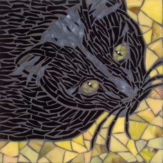 Gato (Spanish for Cat) by Barb Keith, via Flickr