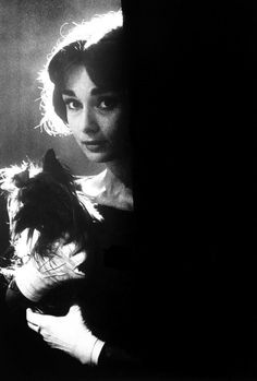 "vintagegal: ""Audrey Hepburn with her dog Mr. Famous in Paris, 1957 """
