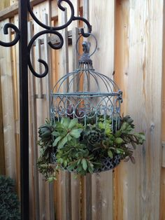 I decided to try a little Pinterest inspired project for the garden.