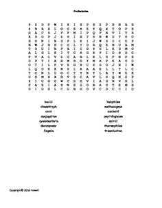 The French Revolution and Napoleon Word Search for World