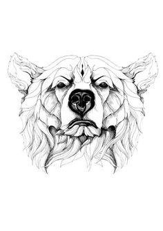 Baby Bear Tattoo, Polar Bear Tattoo, Tattoo For Son, Wild Tattoo, Tattoo Project, Bear Pictures, Memorial Tattoos, Tattoo Designs And Meanings, Bear Art