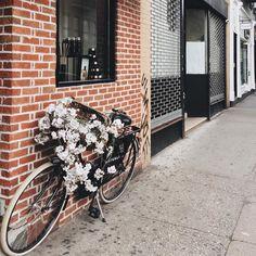 Pretty little street finds @ritualscosmetics