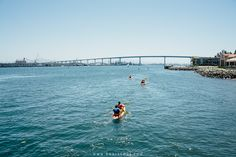Kayaking in Coronado Island