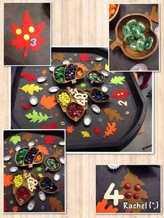 "Autumn counting & number recognition - from Rachel ("",)"