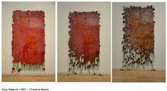Anya Gallaccio: Perishable art