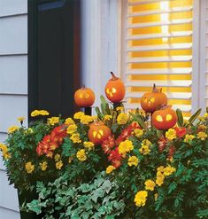 Dress up window boxes and flower boxes with teeny-tiny jack-o'-lanterns mounted to plant dowels for the cutest Halloween display. How-To: Pint-Size Pumpkins & Blooms