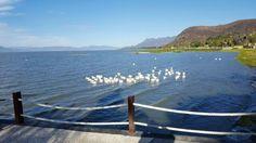 Lago de Chapala Jalisco México