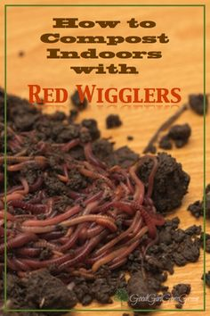 How to Compost with Red Wigglers GoodGirlGoneGreen.com #compost #redwigglers #composting #garden