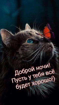 Good Night, Good Morning, Gq, Congratulations, Happy Birthday, Inspirational Quotes, Positivity, Romantic, Motivation