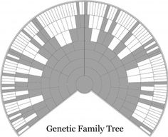The Genetic Genealogist - Q&A: Everyone Has Two Family Trees – A Genealogical Tree and a Genetic Tree