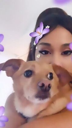 Aww Ariana and Tolouse today arianaandtolouse toulouse arianapets arianaspets arianacute arianagrande godisawoman gaintrick likeforlike bloodline breakupwithyourgirlfriend perfection Ariana Grande Meme, Ariana Grande Pictures, Ariana Video, Bae, Cat Valentine, Aesthetic Videos, Dangerous Woman, Toulouse, American Singers