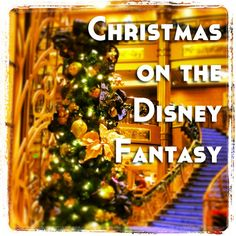 Cruising on the one of the Disney Cruise Line ships during the holiday season is such a special experience. Because of my old school schedule, we cruised Disney Fantasy Ship, Disney Fantasy Cruise, Disney Cruise Tips, Disney Parks, Disneyland Cruise, Cruise Vacation, Vacation Trips, Vacation Ideas, Vacation Travel