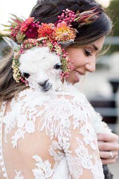 Fawn Vine Photography Design Sasystacy Profile Pinterest