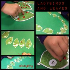 I made these numbered leaves and set them up with mini ladybirds.