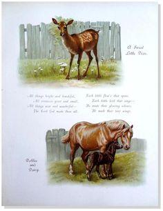 """Children's/Antique Print/Vintage/Horse/H. Bennett -""""Dobbin & Daisy"""" Nister-1895 #Vintage120yearsold"""