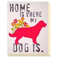 Too true, home would not  be the same with my hairy creatures ACHICA | Product