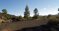 Se presenta un informe para la construcción de una planta de biomasa en Huesca - http://www.renovablesverdes.com/se-presenta-informe-la-construccion-una-planta-biomasa-huesca/