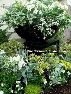Pretty 8 White Garden Ideas For Beautiful Dream Garden Container Flowers, Container Plants, Container Gardening, Garden Urns, Garden Planters, Herb Garden, Moon Garden, Dream Garden, Landscape Design