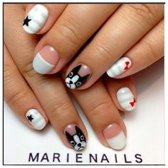 Marie Nails - boston terrier