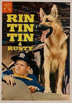 Rin Tin Tin & Rusty Poster - 14x20 / Italian Film, 1974