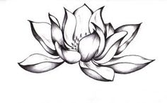 Lotus flower. This would be great for a #tattoo design  http://awesometattoophotos329.blogspot.com