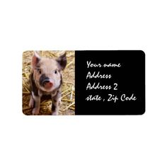 How to Piglet Address Label you will get best price offer lowest prices or diccount coupone