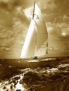 ~<3 ~*  ... TRIVIA is a classic racing yacht of the 12mR class