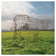 """""""Why a cow?"""" turns into wire cow. Pink Floyd: Atom Heart Mother Anniversary print - by Storm Thorgerson - UK Storm Thorgerson, Atom Heart Mother, Pink Floyd, Painting Prints, Canvas Prints, Cow Canvas, Expo, Frames On Wall, Cover Art"""