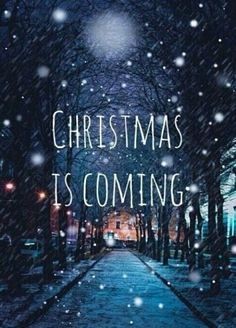 Merry Christmas quotes 2017 sayings inspirational messages for cards and friends.merry christmas quotes with images,greetings,sms,messages and wishes for this Xmas. Merry Christmas Quotes, Christmas Mood, Merry Little Christmas, Noel Christmas, Christmas Is Coming Quotes, Christmas Lyrics, Holiday Mood, Christmas Wreaths, Holiday Time