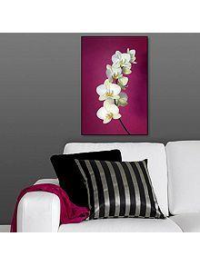 Fuschia orchid wall art