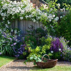pretty garden around gate