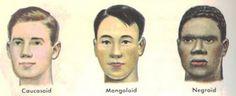 Mongoloid Race | ... negroids mongoloids caucasian race negroid race mongoloid race