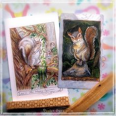 Happy Squirrel Cards / Photo © www.VioletAura.com