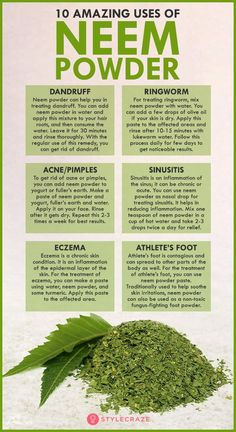 10 Best Neem Powder Benefits You Never Knew! is part of Coconut health benefits - Is taking neem leaves safe Can neem leaf powder be taken every day Ahead are the 10 amazing neem powder benefits and uses Read on to know more in detail Matcha Benefits, Lemon Benefits, Coconut Health Benefits, Neem Leaf Benefits, Moringa Benefits, Health Tips, Health And Wellness, Health And Beauty, Health Articles