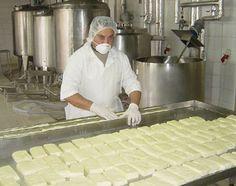 Halloumi (en griego χαλλούμι; en turco Hellim) es un queso originario de Chipre. Tradicionalmente se elabora con una mezcla de leche de cabra y oveja, aunque se pueden encontrar halloumi elaborados con leche de vaca.