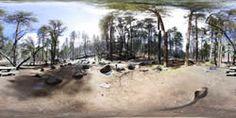 Manzanita Campsite 2