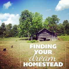 Finding Your Dream Homestead