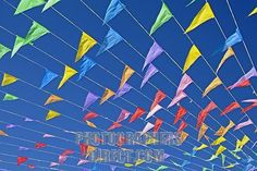 rows of flags against a blue sky