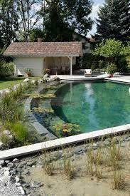 Resultado de imagen para organic pool