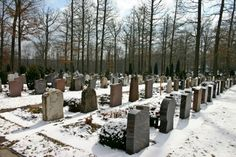 What really happens after death? — Bible News Prophecy Radio