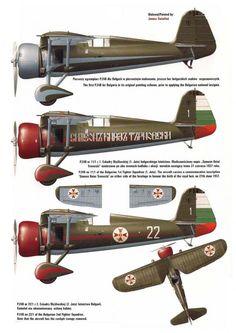 Bulgarian Air Force PZL P.24.