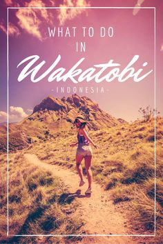 My experience in Wakatobi Indonesia. How to get there. Where to stay. What to do. All those lovely details and more.