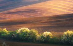 Morawy południowe (wiosna)