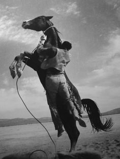 On the set of the United Artists film The Misfits, directed by John Huston, a rearing horse sweeps its handler off his feet and leaves him clinging to its neck. Original Publication: In black and white book (Photo by Ernst Haas/Getty Images)